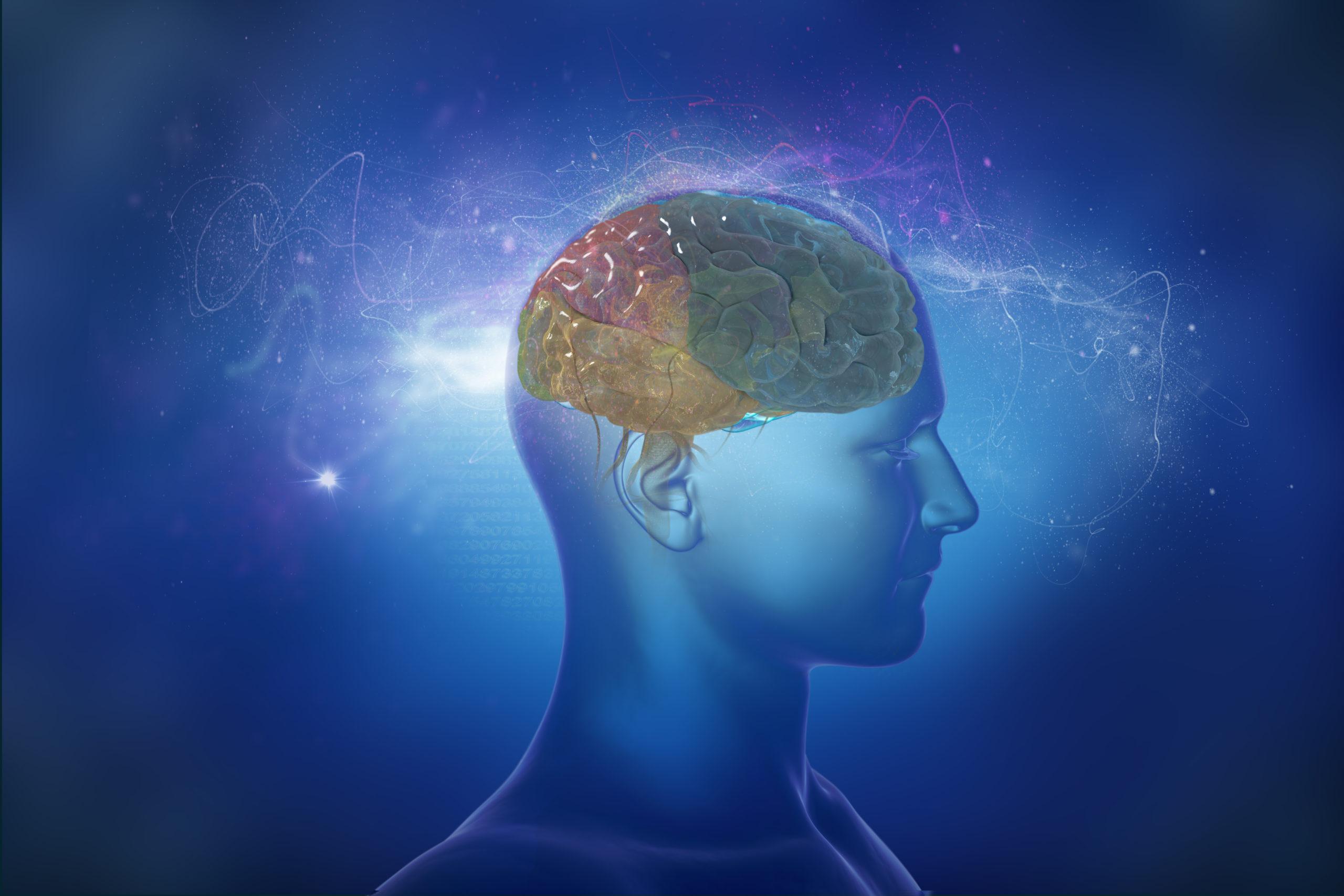 Kopf und Gedanken